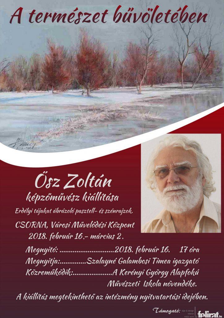 Ősz Zoltán képzőművész kiállítása